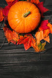 Happy Thanksgiving background with pumpkins and autumn leaves Stock Images