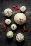 Happy Thanksgiving Background. Selection of various decorative white pumpkins on dark wooden background. Holiday still life stock photos