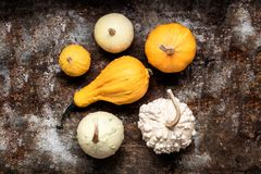 Happy Thanksgiving Background. Selection of various pumpkins on rustic metal background. Autumn vegetables. Happy Thanksgiving Background. Selection of various stock photo