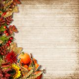 Happy Thanksgiving Card. Autumn Background. Border with pumpkin and autumn bouquet on a vintage wooden background, with a place for photo and text. Thanksgiving Royalty Free Stock Images