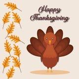 Happy thanksgiving card. Vector illustration graphic design Stock Photos