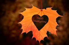Happy Thanksgiving card. Happy Thanksgiving - text in heart, background dry leaves royalty free stock images