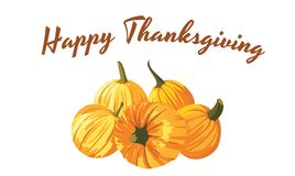 Happy Thanksgiving card. Pile of pumkins, vector illustration Royalty Free Stock Photography