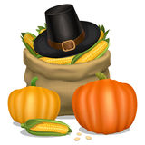 Happy Thanksgiving card. Piligrim hat with orange pumpkins Royalty Free Stock Photos