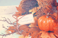 Happy Thanksgiving cornucopia. With Autumn Fall leaves, pumpkin, sunflower and berries on white shabby chic tray against a pale blue background, with vintage royalty free stock photo