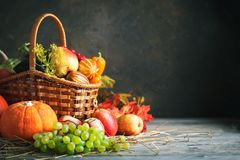Happy Thanksgiving Day background, wooden table decorated with Pumpkins, Maize, fruits and autumn leaves. Harvest stock images