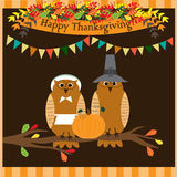Happy Thanksgiving Day card or poster with cute owls in pilgrim costume sitting on a tree branch. Royalty Free Stock Photos