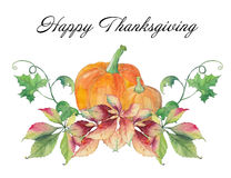 Happy Thanksgiving Day card with pumpkins and autumn leaves. Royalty Free Stock Photo