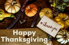 Happy Thanksgiving Day Card writing Thank you with hashtag social share image. Beautiful flat lay of abundant autumn harvest on rustic wood Thanksgiving dinner Stock Photography