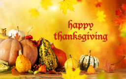 Happy Thanksgiving day. Happy Thanksgiving  - harvest background with pumpkin and dry leaves Royalty Free Stock Photos