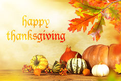 Happy Thanksgiving day. Happy Thanksgiving - harvest background with pumpkin and dry leaves royalty free stock photo