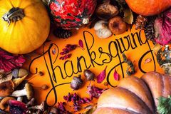 Happy Thanksgiving Day holiday background postcard concept cornucopia full harvest fruit vegetable Hand drawn greeting card autumn. Leaves pumpkin mushroom Stock Photography