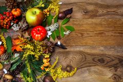 Happy Thanksgiving decor with rowan berries on wooden background Stock Images