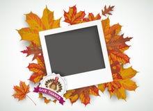 Happy Thanksgiving Emblem Foliage Pic Stock Images