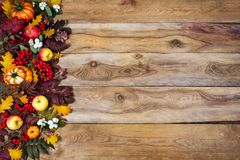 Fall background with rowan and oak leaves, pumpkins, apples, cop. Happy Thanksgiving or fall greeting with colorful rowan and oak leaves, red berries, pumpkins Royalty Free Stock Image