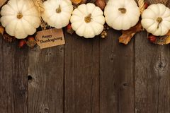 Happy Thanksgiving gift tag with top border of white pumpkins over wood. Happy Thanksgiving gift tag with top border of leaves and white pumpkins over a rustic Royalty Free Stock Image