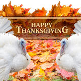 Happy Thanksgiving Greeting. Happy Thanksgiving Greeting design concept Stock Photo