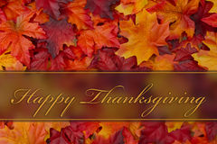 Happy Thanksgiving Greeting Royalty Free Stock Photography
