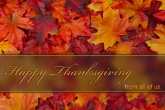 Happy Thanksgiving Greeting. Fall Leaves Background and text Happy Thanksgiving from all of us stock photos