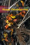 Happy Thanksgiving Greeting Royalty Free Stock Images