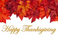 Happy Thanksgiving greeting with red and orange fall leaves royalty free stock image