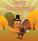 Happy thanksgiving, halloween turkey funny illustr Royalty Free Stock Photography