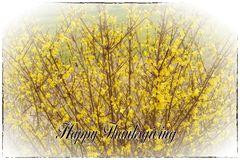 Happy Thanksgiving Holiday Greeting Card stock photography