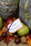 Happy Thanksgiving Pumpkin in Rustic Setting. Royalty Free Stock Photography