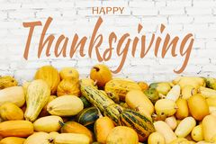 Happy Thanksgiving sign and pumpkins royalty free stock photo