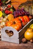 Happy Thanksgiving Stock Photos