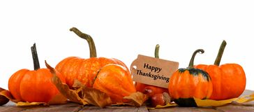 Happy Thanksgiving tag with border of autumn pumpkins on white Royalty Free Stock Photos