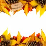 Happy Thanksgiving tag with colorful leaf double border over white Royalty Free Stock Photos