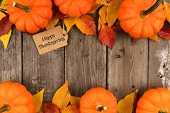 Happy Thanksgiving tag with double border of pumpkins and leaves over wood. Happy Thanksgiving gift tag with double border of pumpkins and autumn leaves over a Stock Images