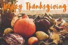 Happy Thanksgiving Text on beautiful Pumpkin in light, vegetable Stock Photography