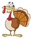 Happy thanksgiving turkey bird Royalty Free Stock Photos