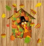 Happy Thanksgiving Turkey Stock Photography