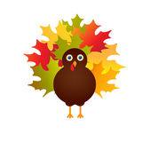 Happy Thanksgiving with turkey,  card. Happy Thanksgiving Day card with cute turkey with tail from maple leaves , autumn holiday  illustration Royalty Free Stock Photo