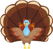 Cute Thanksgiving Turkey. A cute cartoon Thanksgiving turkey Royalty Free Stock Photography