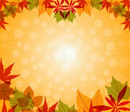 Happy Thanksgiving vector illustration Royalty Free Stock Photography
