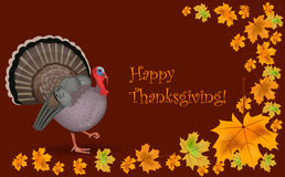 Happy Thanksgiving. Web  icon vector illustration Royalty Free Stock Images