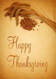 Happy Thanksgiving Wheat Stock Photo