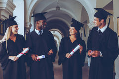 Happy to be graduated. Four college graduates in graduation gowns walking along university corridor and talking Stock Images
