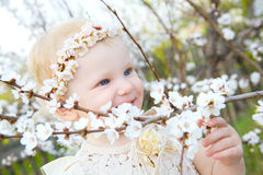 Happy to meet spring Royalty Free Stock Images
