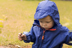 Happy toddler in a blue raincoat against blurred grass. Autumn concept. Copy space Royalty Free Stock Images