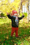 Happy toddler boy in autumn outdoors Stock Photography