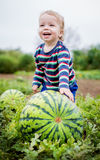 Happy toddler boy chooses a watermelon Stock Photography