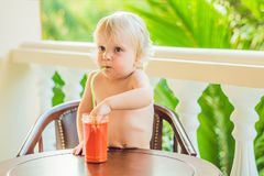 Happy toddler boy drinking healthy selfmade smoothie stock image