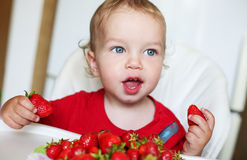 Happy toddler boy eating strawberries. On a white background Royalty Free Stock Photo