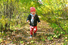 Happy toddler boy running in autumn outdoors Royalty Free Stock Photos