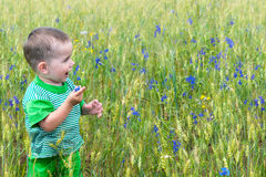 Happy toddler in the field Royalty Free Stock Photos